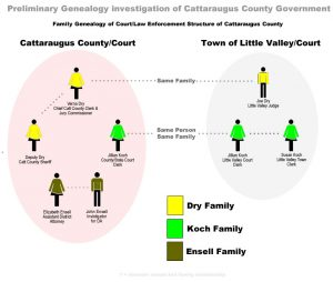 genology-cat-county-government-v4
