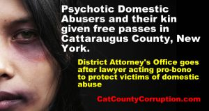 domestic-abuse-cover-up-cattaraugus-county-new-york