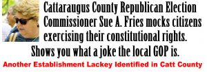 Republican-Election-Commissioner-Sue-Fries-lackey