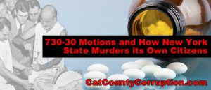 730-30-motion-new-york-state-corruption-murder
