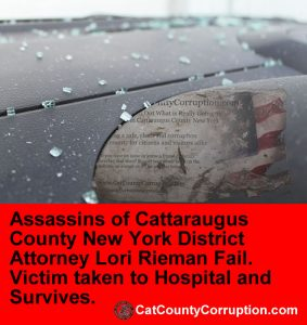 assassination-by-cat-cattaraugus-county-sheriff-whitcomb-kowalski