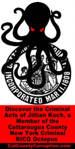 jilian-koch-criminal-octopus-cattaraugus-little-valley-new-york-1