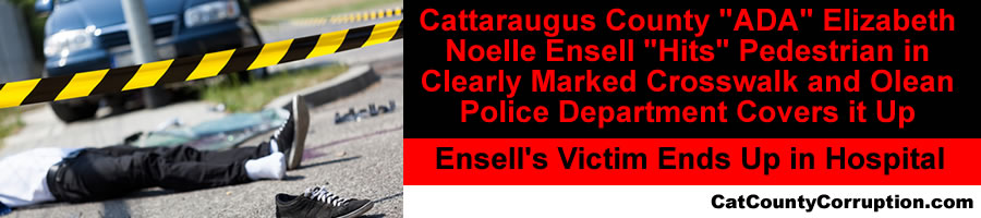 ensell-hit-and-cover-up-crosswalk
