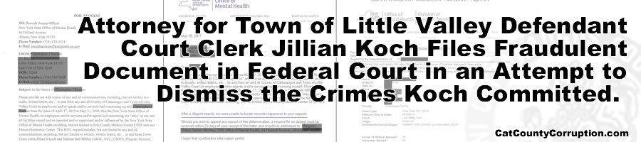 attorney-koch-fraudulent-document-banner