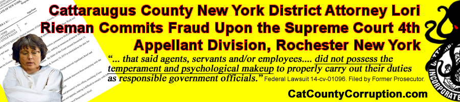 lori-rieman-perjury-4th-department-banner